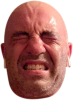 rogan squinting cut out.png