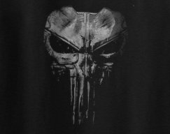 ThePunisher