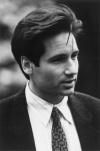 Agent Mulder's Hair