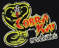 Kobra420