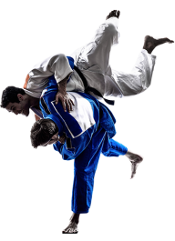 Judoka1532