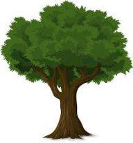 Treeloy