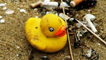 Rubber_duck