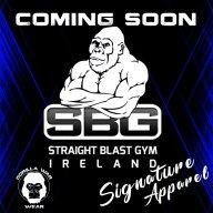 MMA_Wrestling93